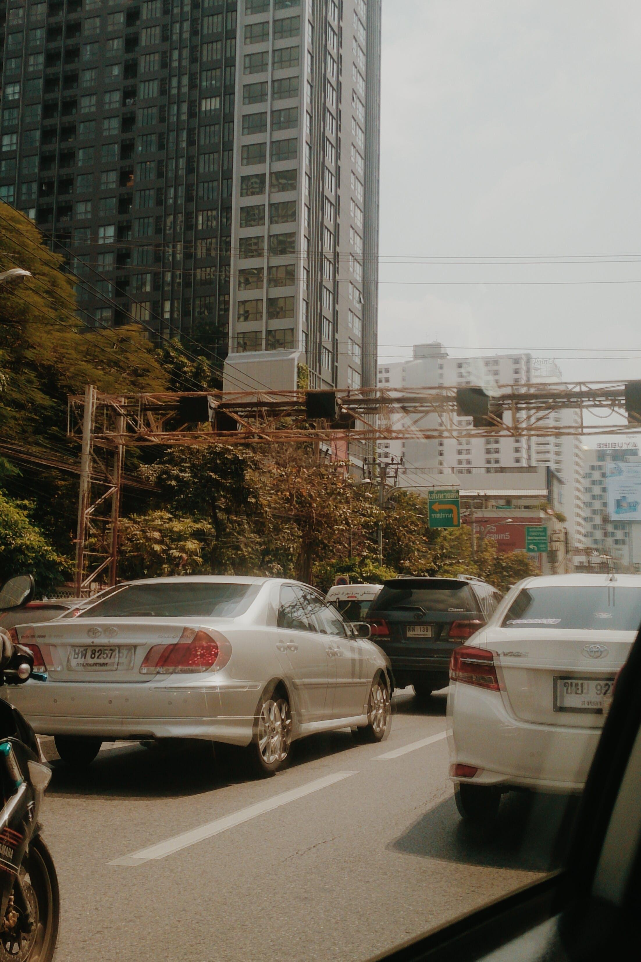 Foto d'estoc gratuïta de arbres, arquitectura, asfalt, autopista
