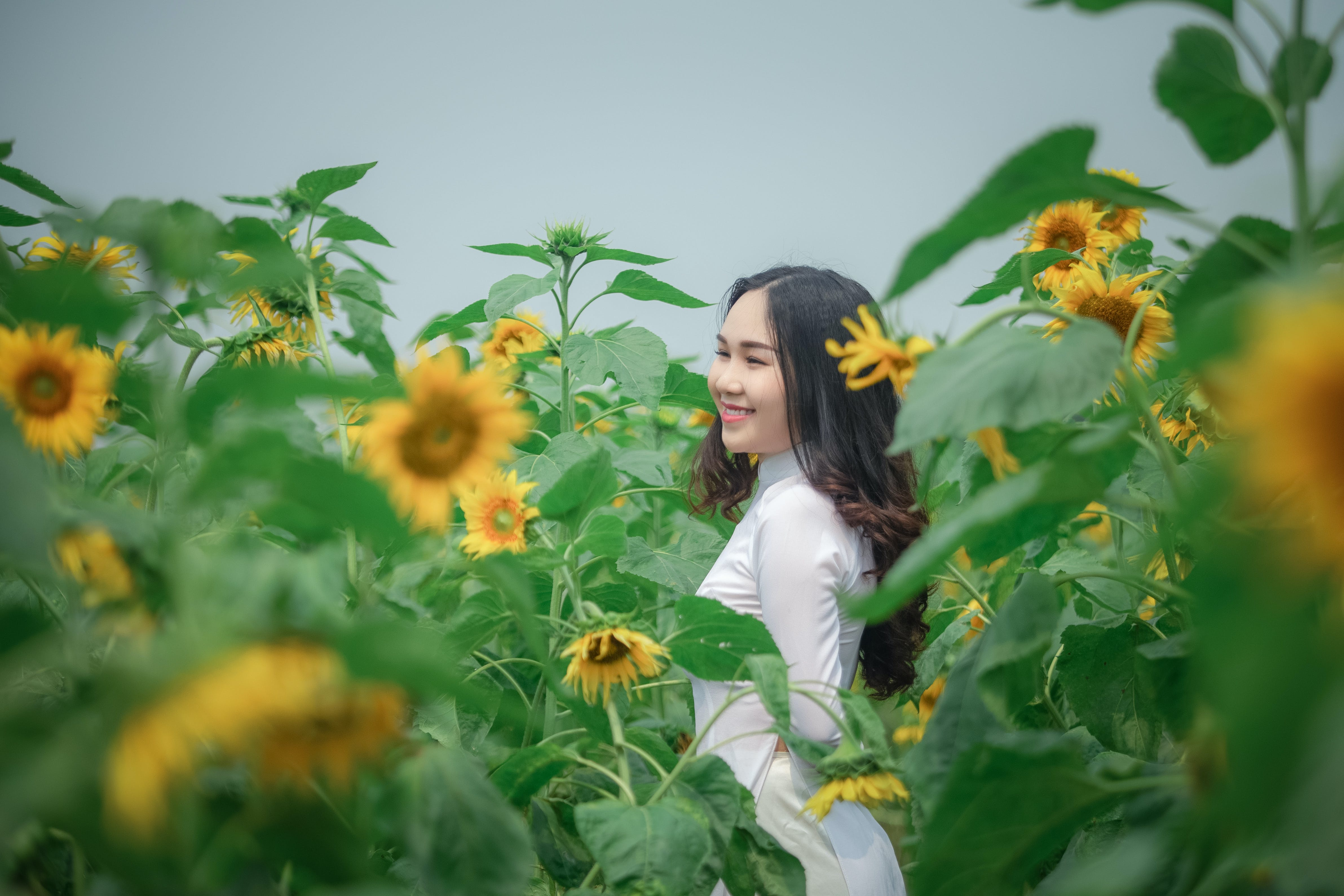Photo of Smiling Woman in White Outfit Standing in the Middle of a Sunflower Field