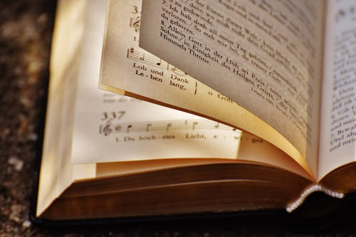 Foto d'estoc gratuïta de educació, estudiar, informació, literatura