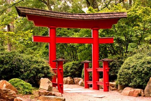 Free stock photo of arch, garden, garden path
