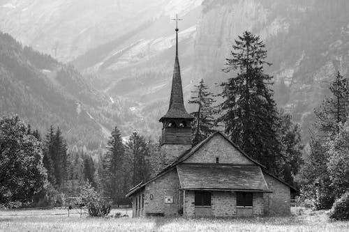 Photos gratuites de arbres, brouillard, chapelle, église