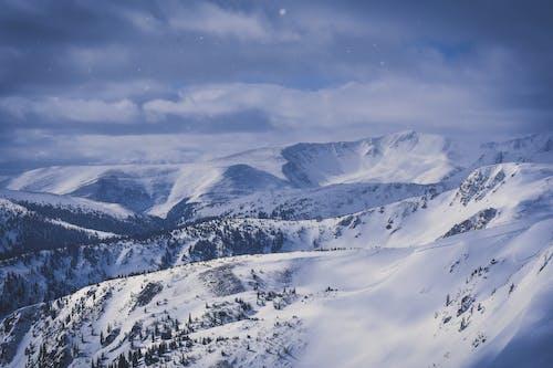 Schnee Unter Blauem Himmel Foto