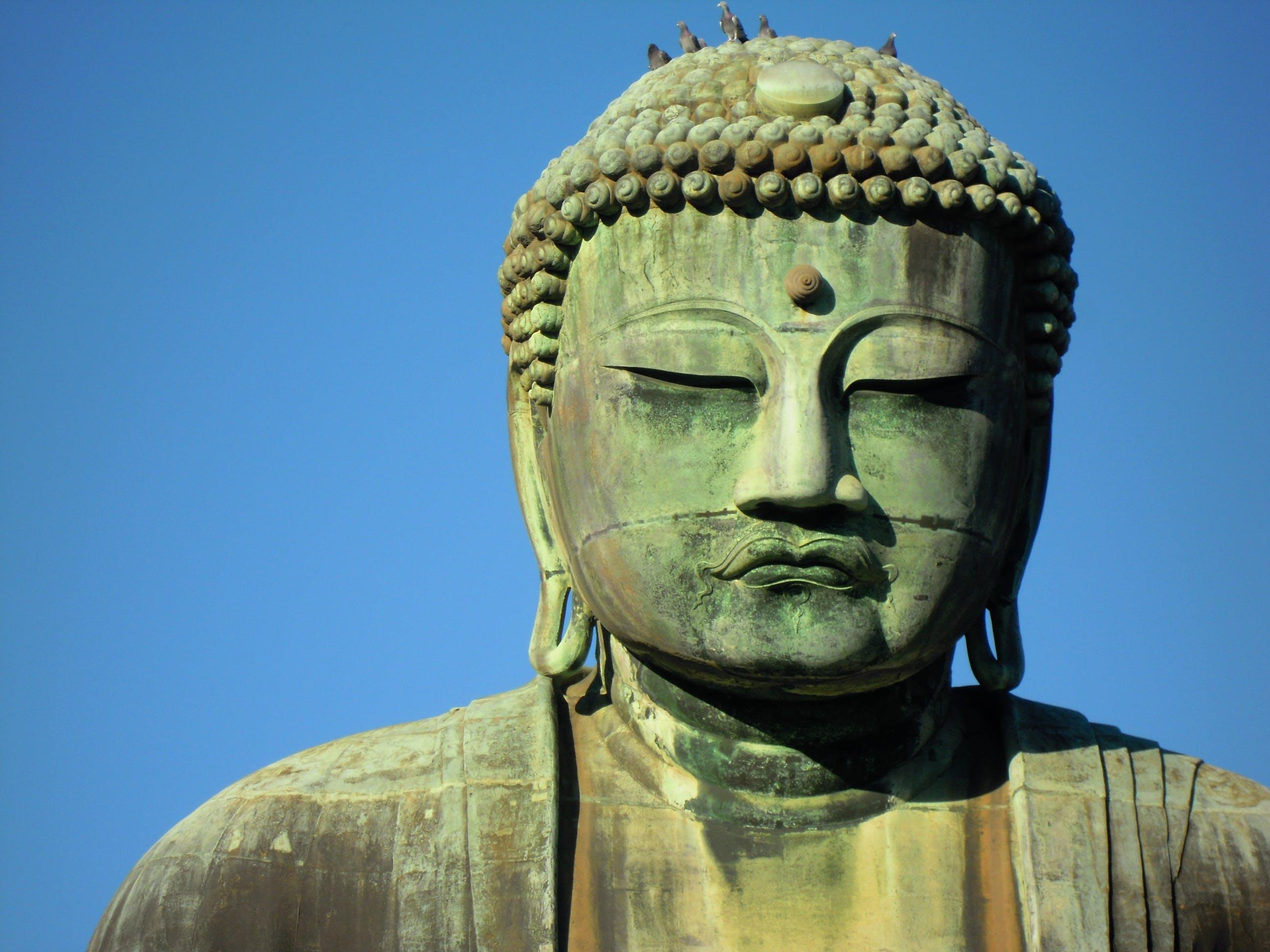 Free stock photo of big buddha, blue sky, great buddha of kamakura, kamakura