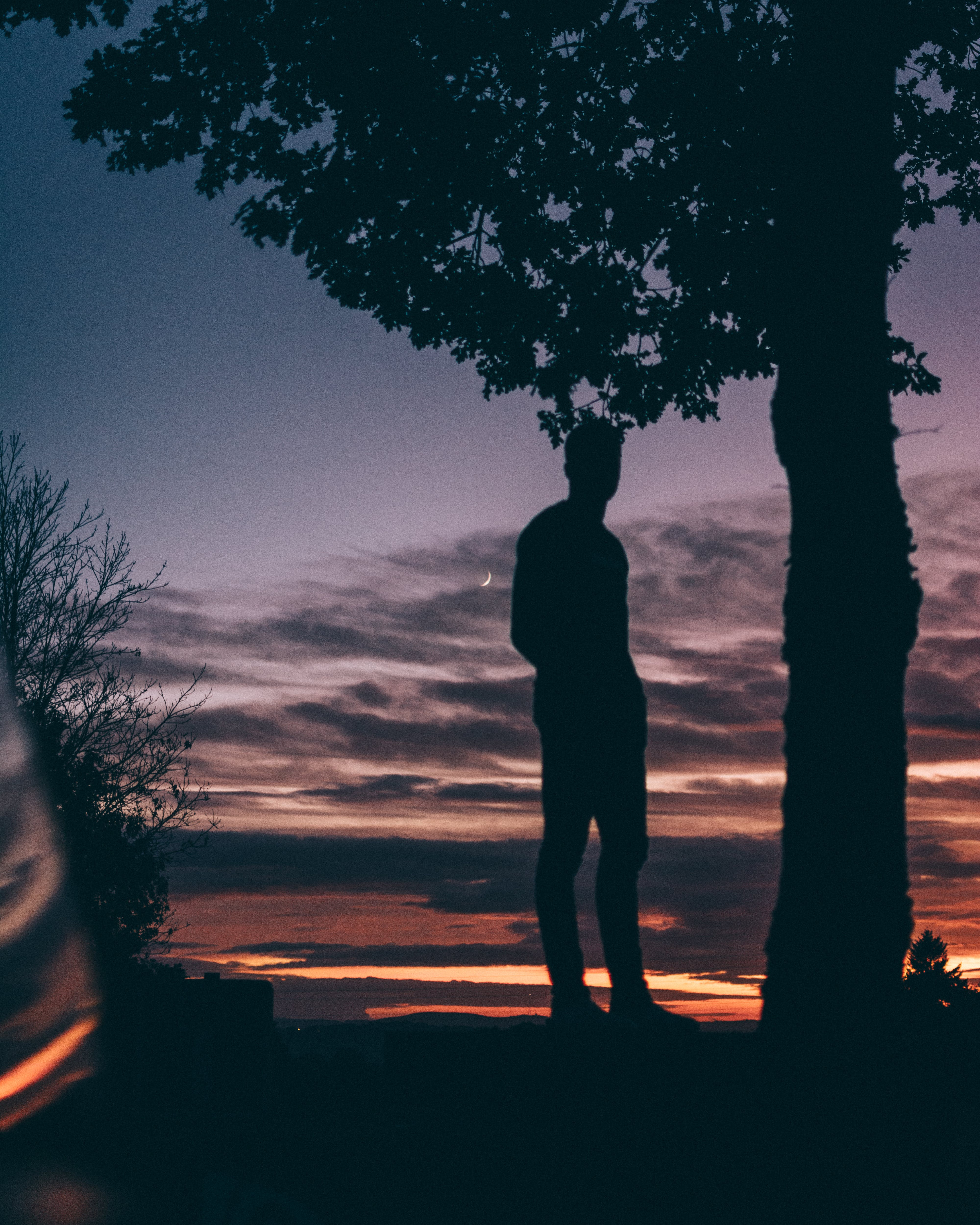 Silhouette Photo of Man Standing Beside Tree