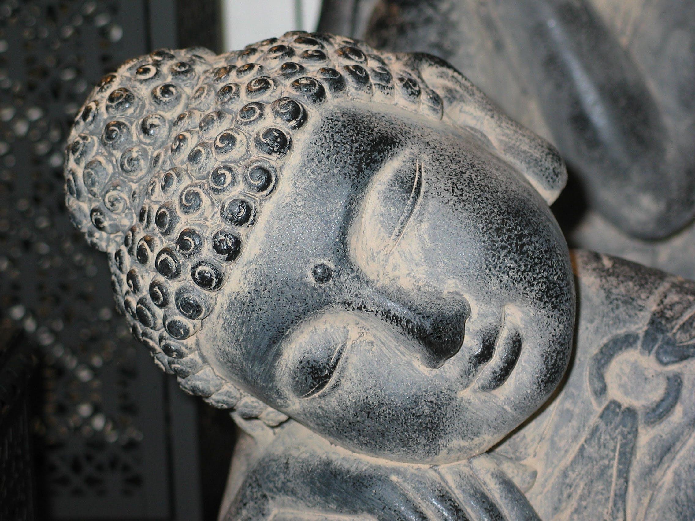 Free stock photo of asia, buddha, Buddhism, ceremony