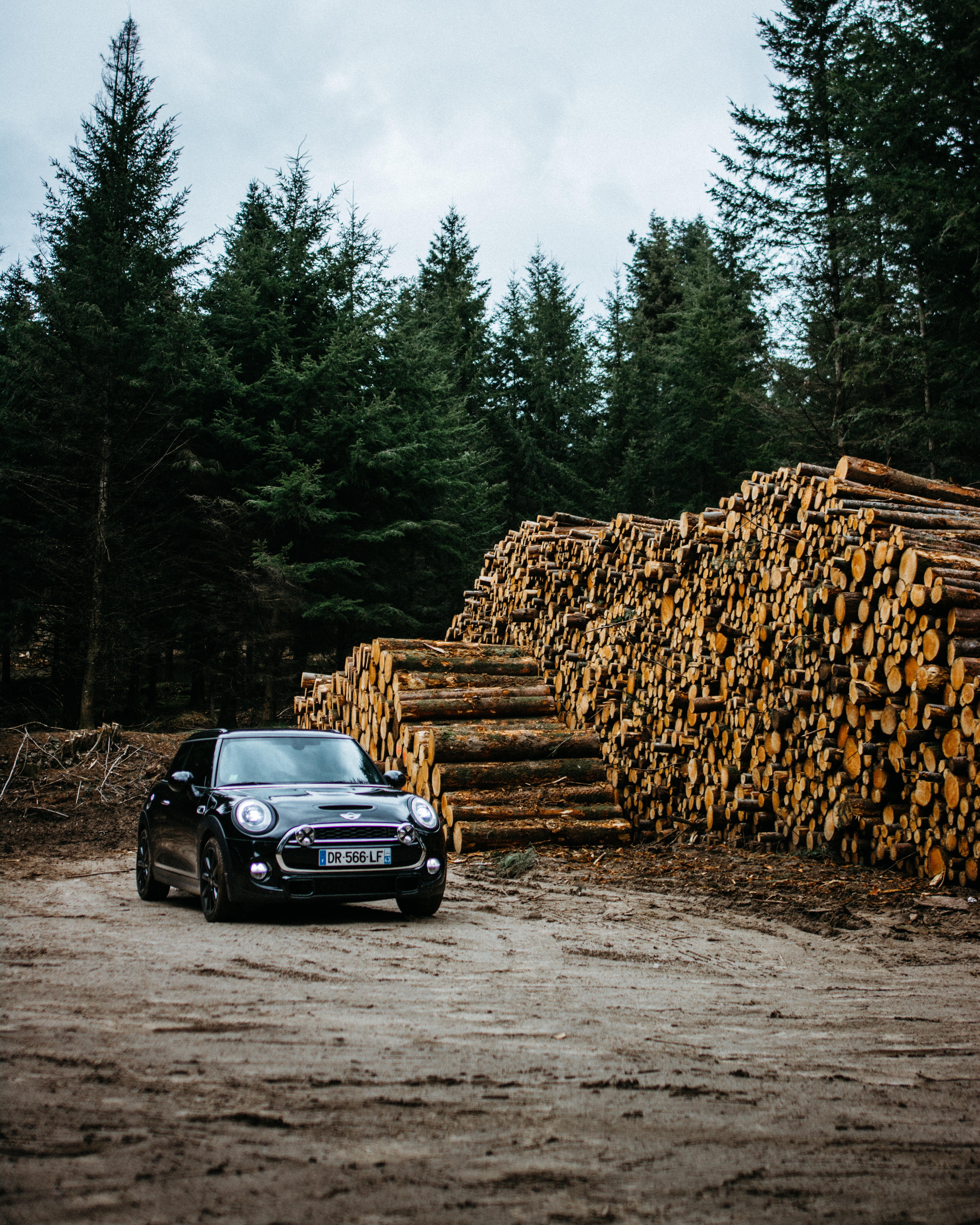Photo Of Car Parked Near Pile Of Logs