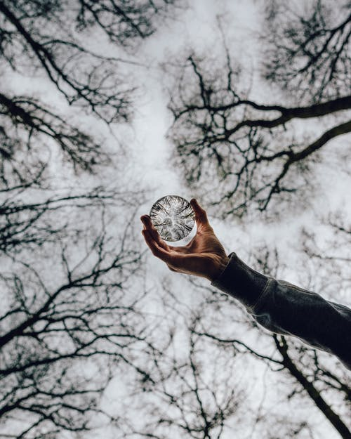 Low Angle Photo of Person Holding Crystal Ball