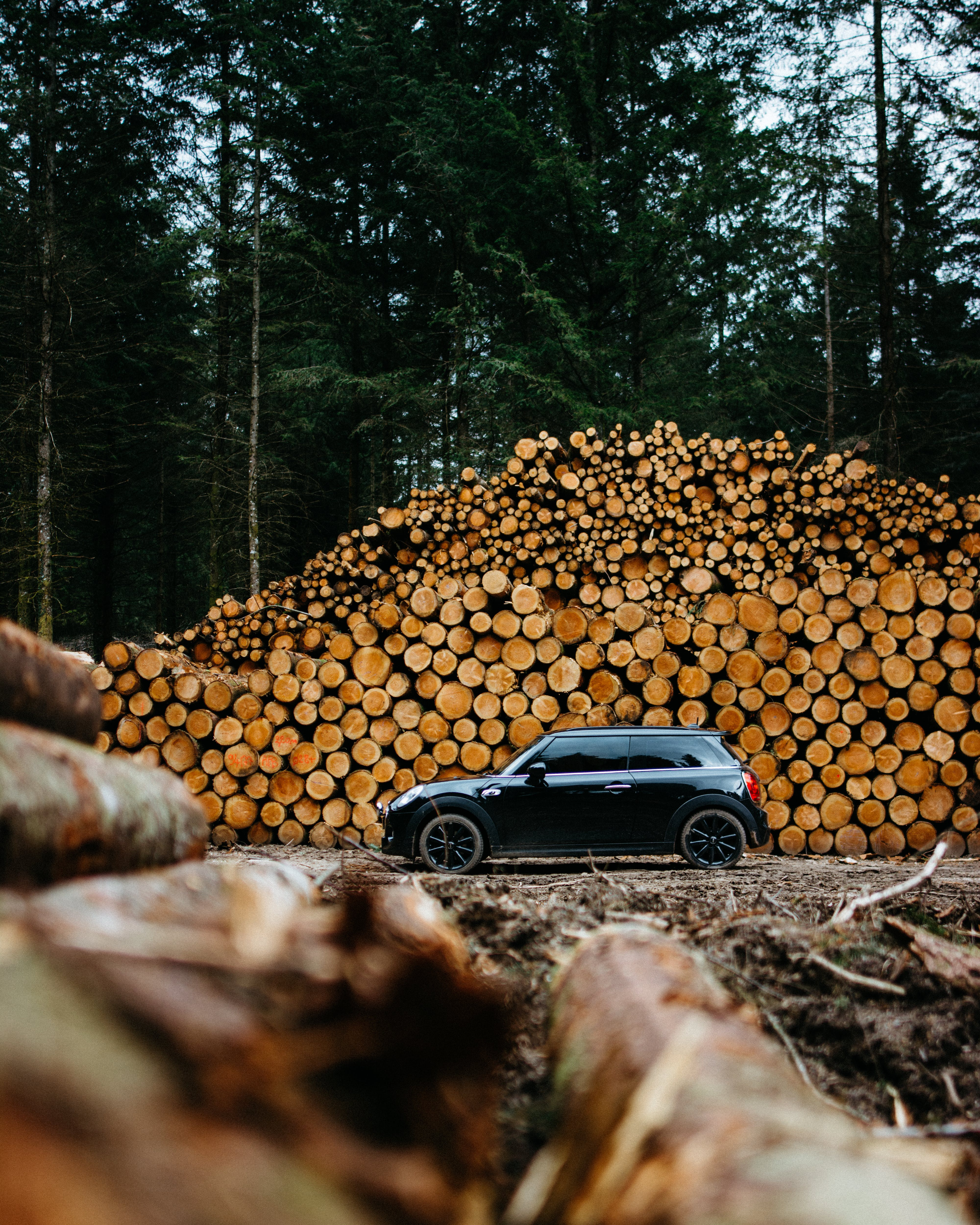 Photo of Car Parked Near Woodpile