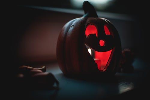 かぼちゃ, アート, キャンドル, キャンドルライトの無料の写真素材
