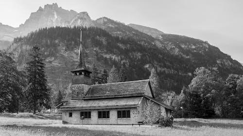 Photos gratuites de arbres, brouillard, chapelle, colline