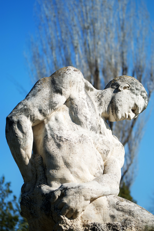 Δωρεάν στοκ φωτογραφιών με άγαλμα, γαλάζιος ουρανός, γίγαντας, δέντρο