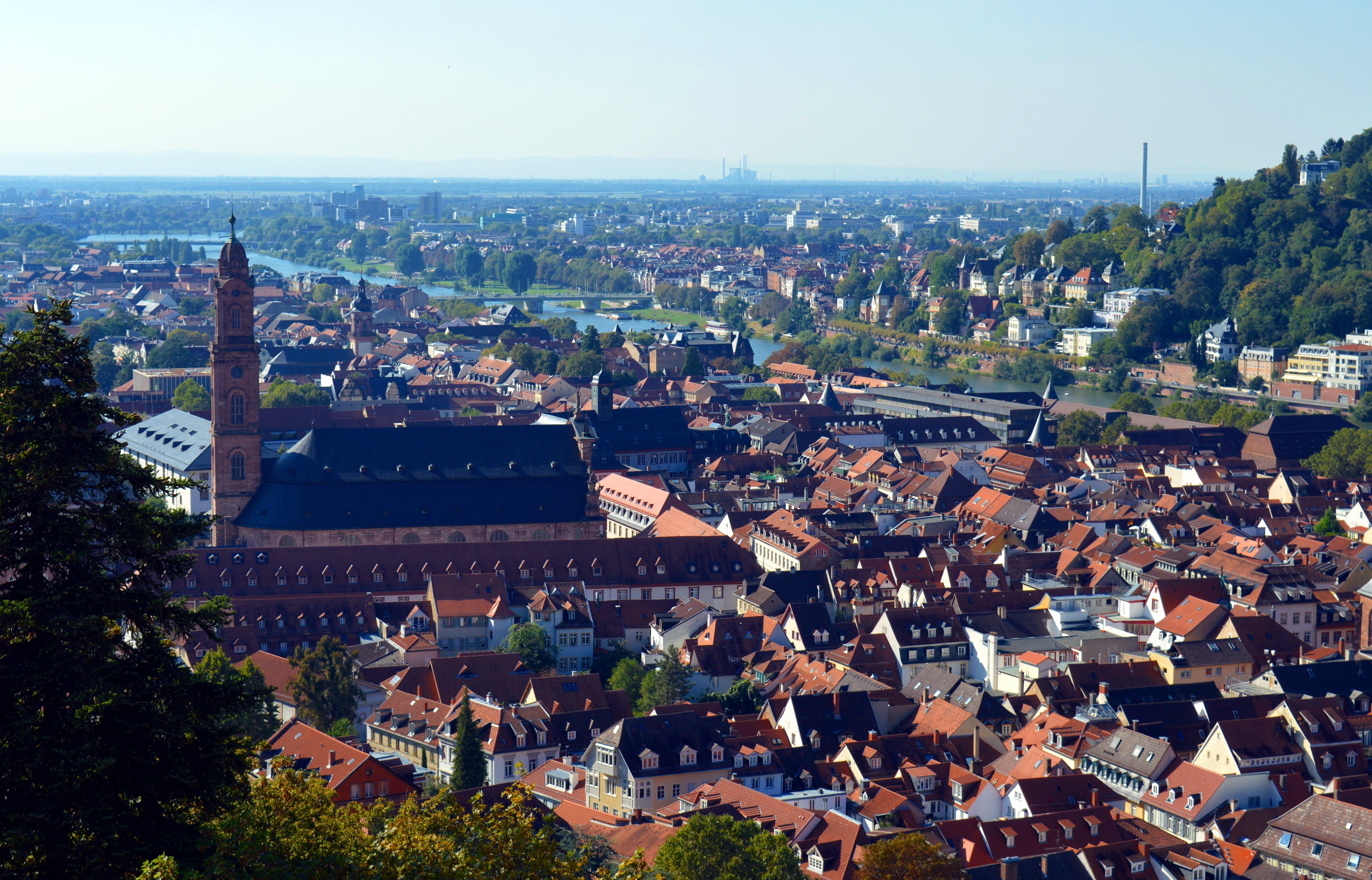 Free stock photo of city, castle, church, germany