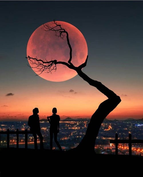 Free stock photo of #gost #evening #landmark #sun #sunset #tree #boys