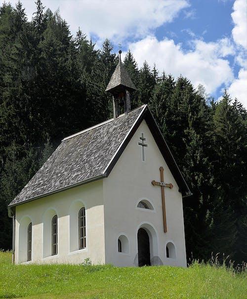 건축, 교회, 숲, 예배당의 무료 스톡 사진