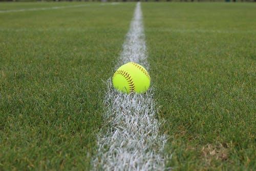 Foto profissional grátis de baseball, perspectiva, softball