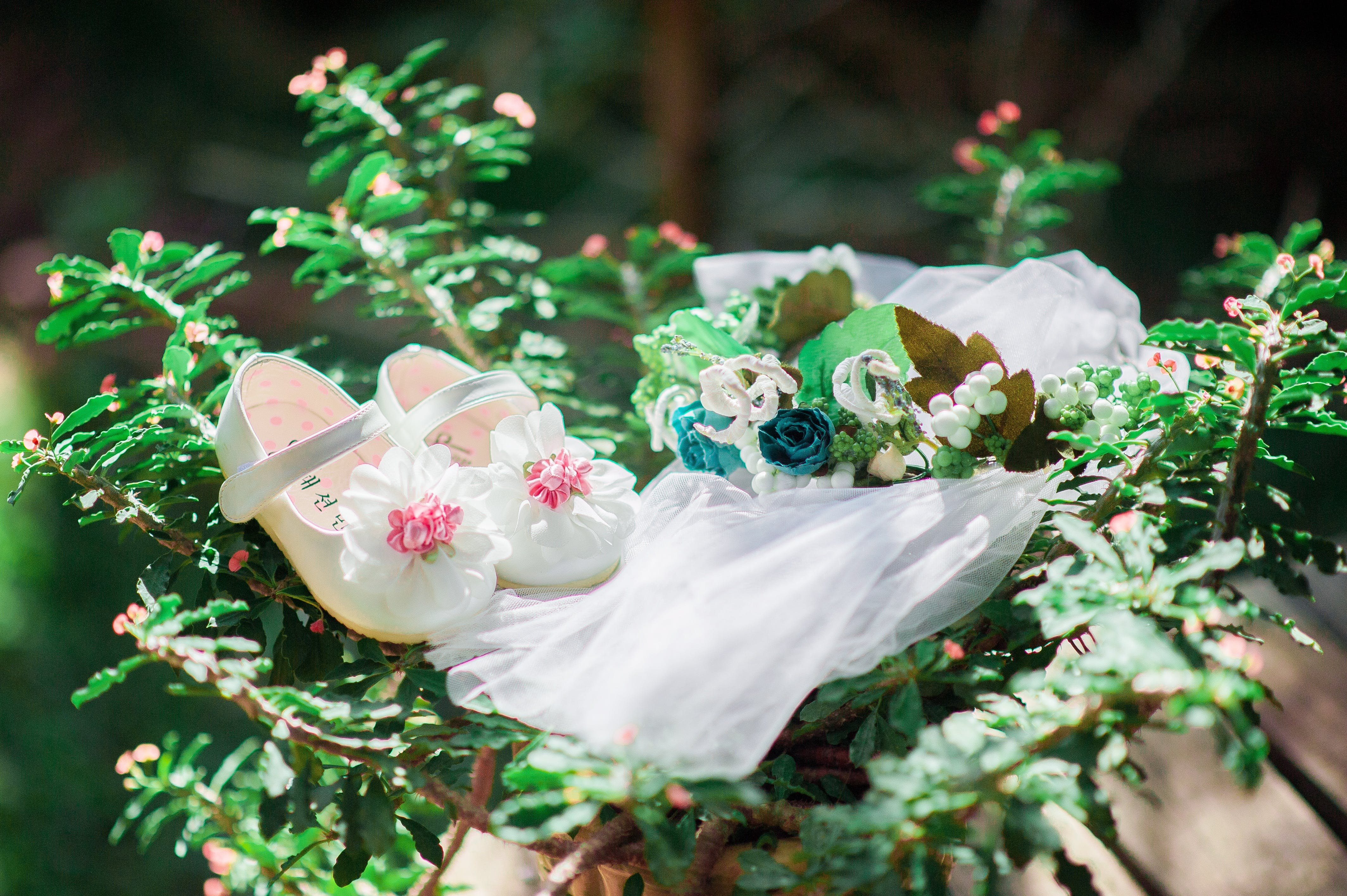 Pair of White Mary Jane Shoes on Green Leafed Plant