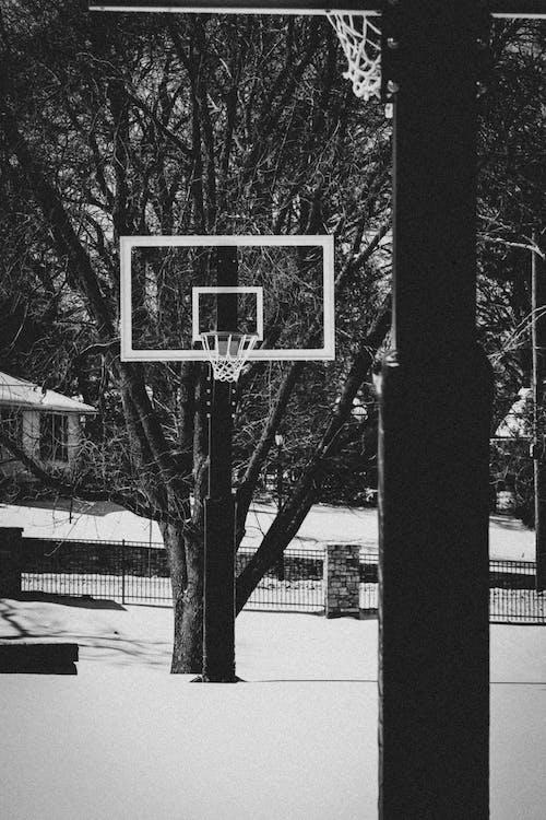 Fotos de stock gratuitas de aro, Aro de baloncesto, baloncesto, blanco y negro