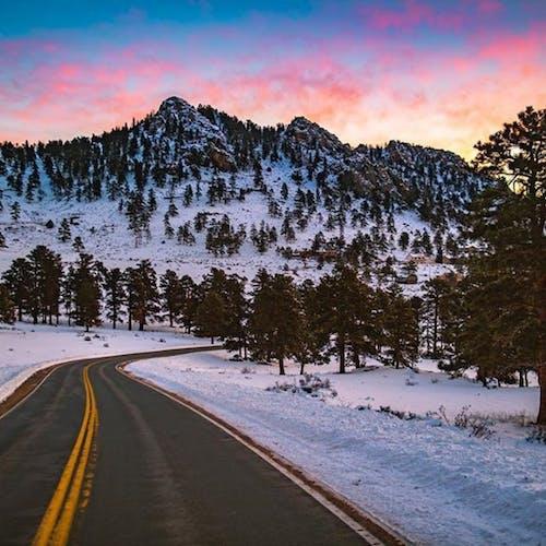 산 정상의 무료 스톡 사진