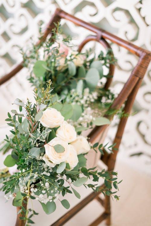 Gratis stockfoto met arrangement, binnen, binnenshuis, bladeren