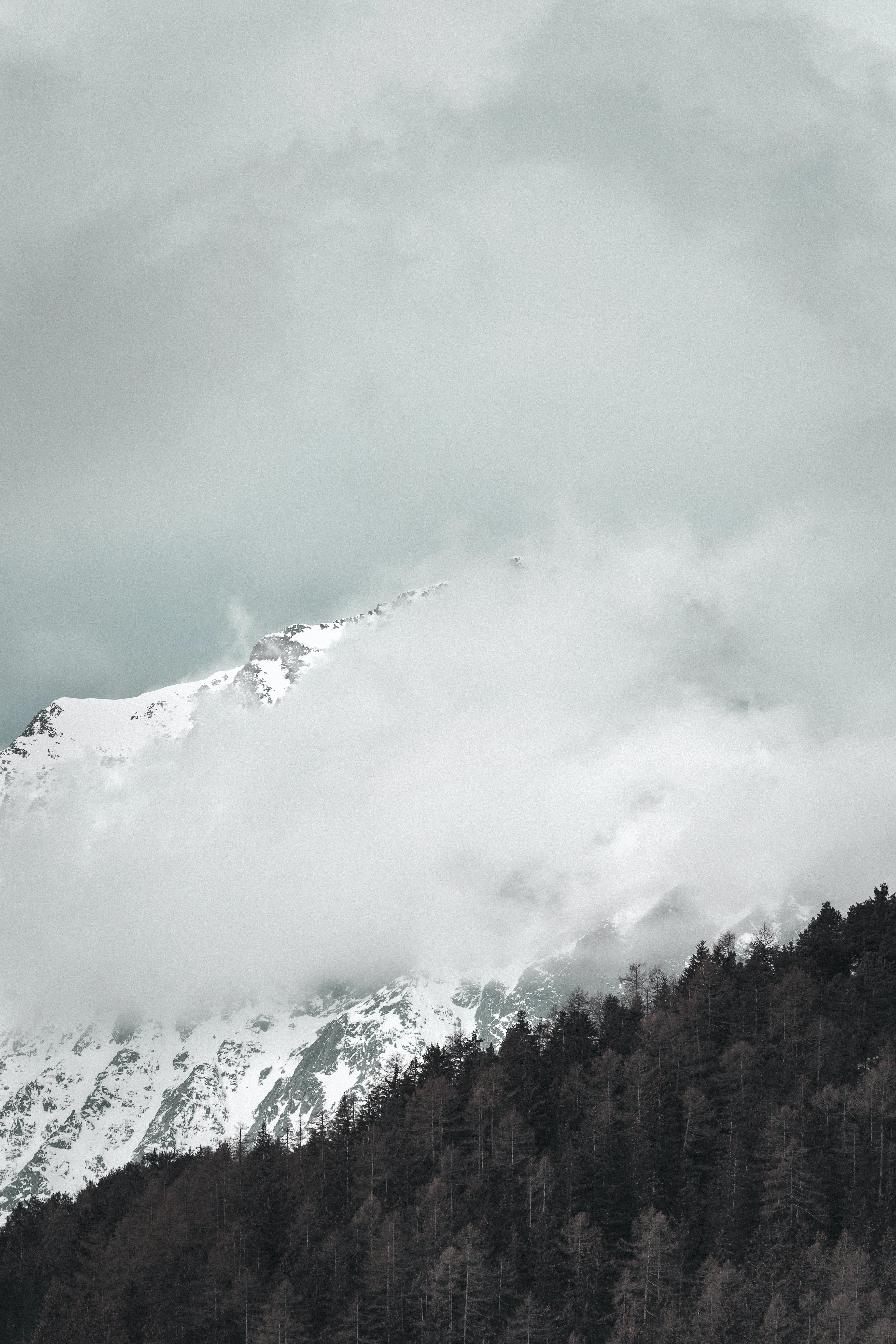 下雪的, 下雪的天氣, 冬季, 冰 的 免費圖庫相片