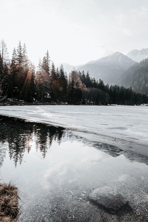 берег озера, високий, висота