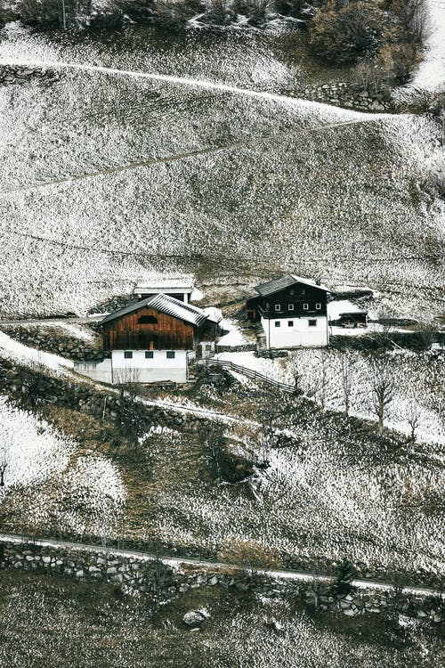 下雪的, 下雪的天氣, 农村, 冬季 的 免费素材照片