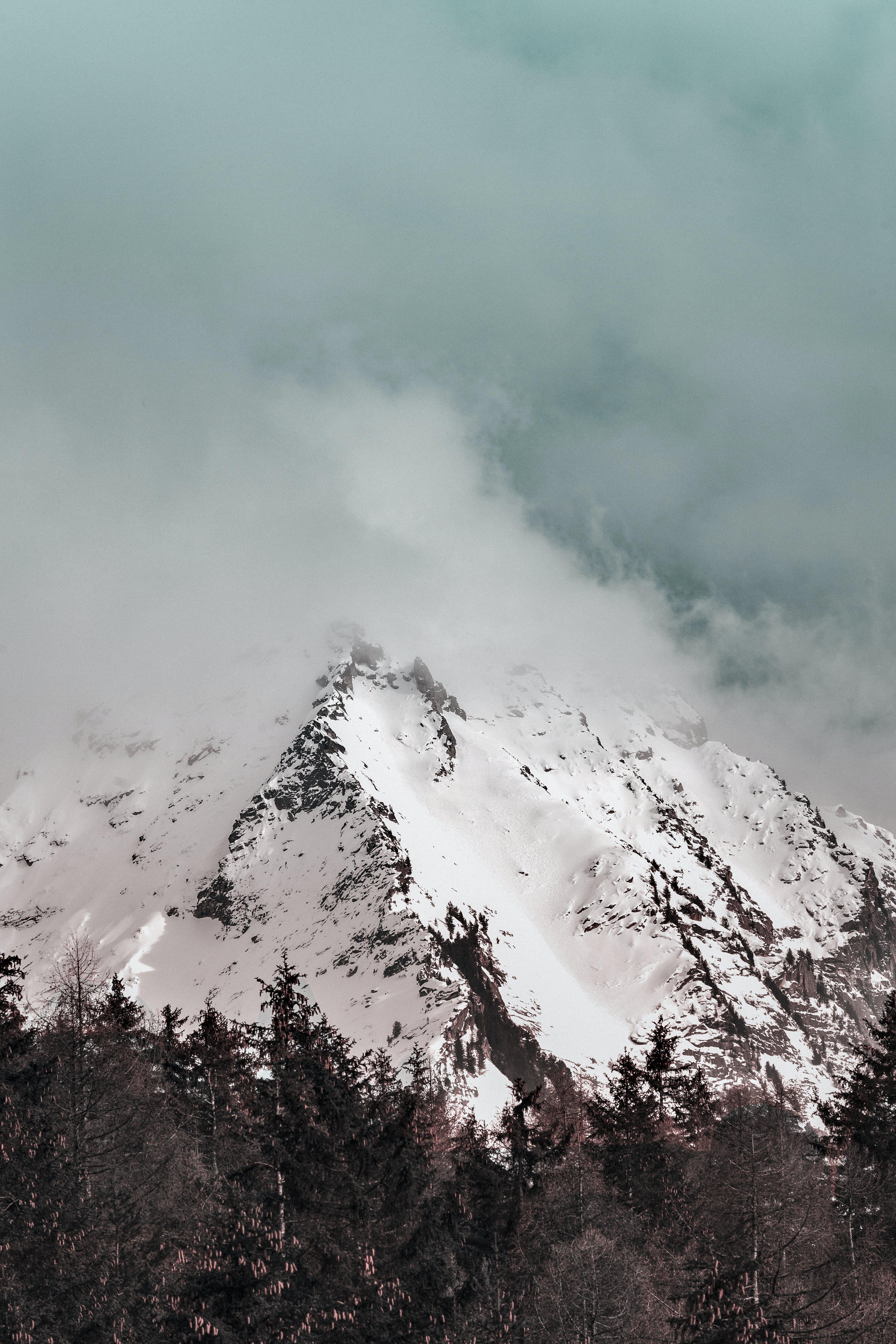 Ingyenes stockfotó Alpok, csúcs, ég, erdő témában