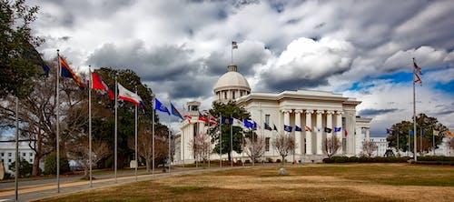 Foto d'estoc gratuïta de Administració, arbres, arquitectura, banderes
