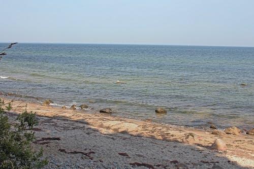 在海邊, 波羅的海, 海塗, 石頭海灘 的 免費圖庫相片