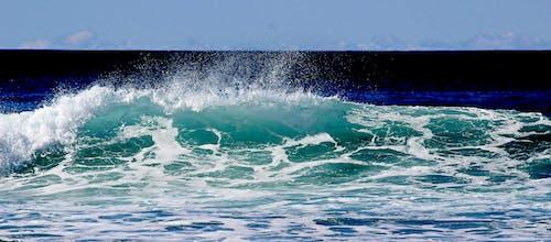 太平洋, 招手, 海, 海洋 的 免费素材照片
