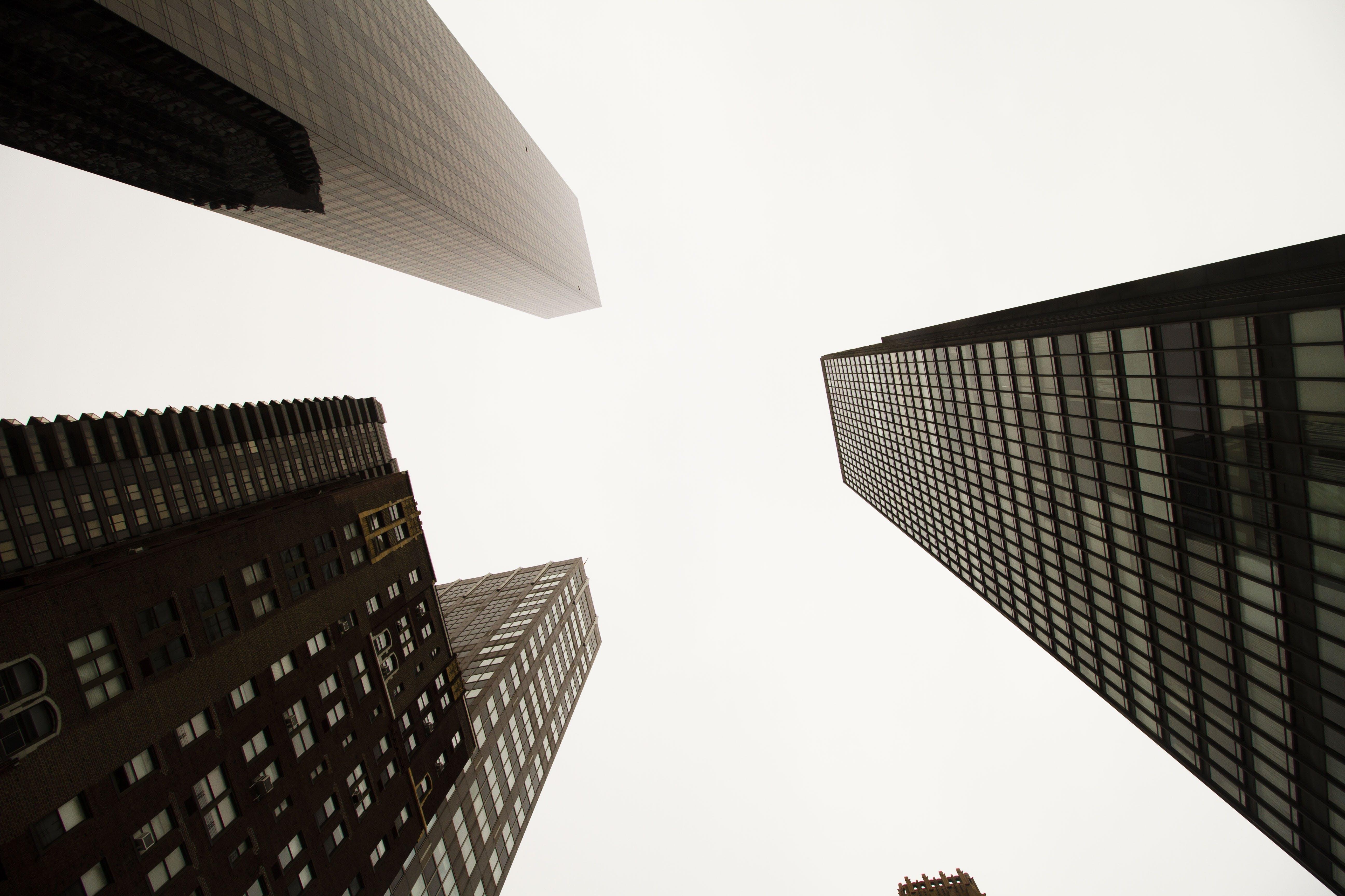 architecture, buildings, business