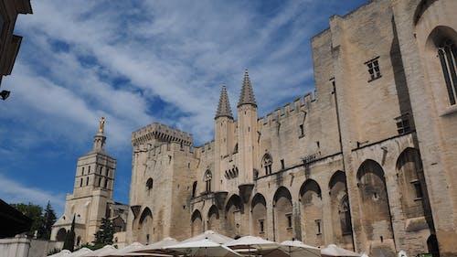 palais des papes, 古老的, 哥德式, 地標 的 免費圖庫相片