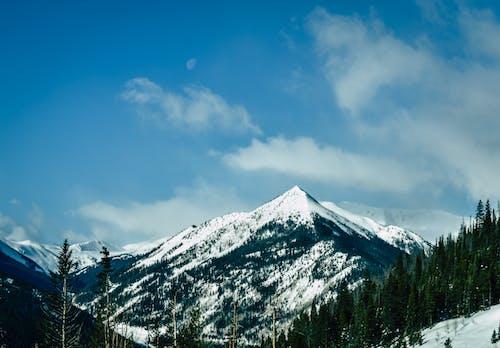 Imagine de stoc gratuită din frig, înalt, mediu, munte