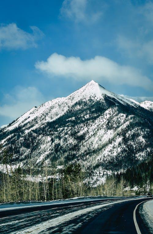 下雪的, 似雪, 冬季, 冷 的 免费素材照片