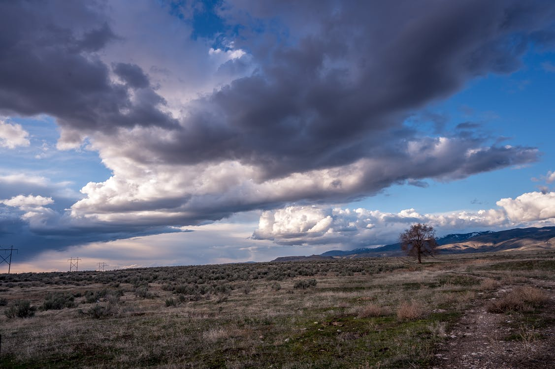 Photo of Grass Field Under Cloudy Sky