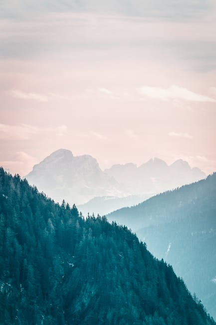 Landscape photo of green trees and mountains