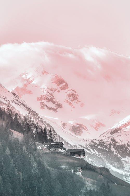 açık hava, ağaçlar, bulutlar, buz içeren Ücretsiz stok fotoğraf