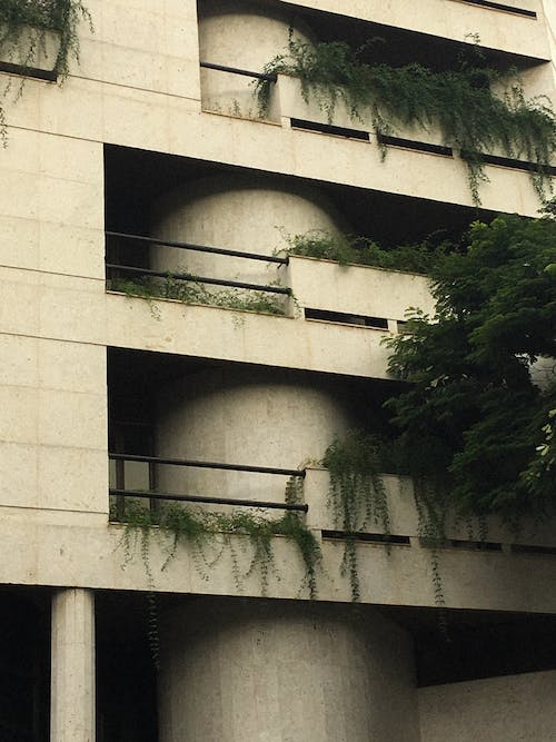 Photo of Concrete Building with Green Plants on Balcony
