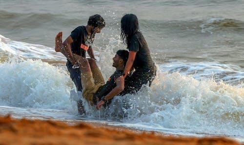 ビーチ, 楽しみ, 親友の無料の写真素材