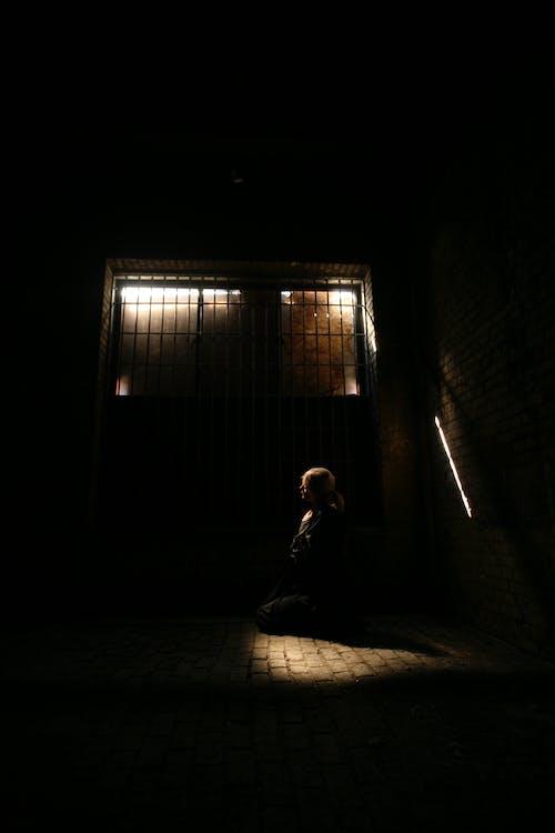 Бесплатное стоковое фото с блондинка, в ловушке, девочка