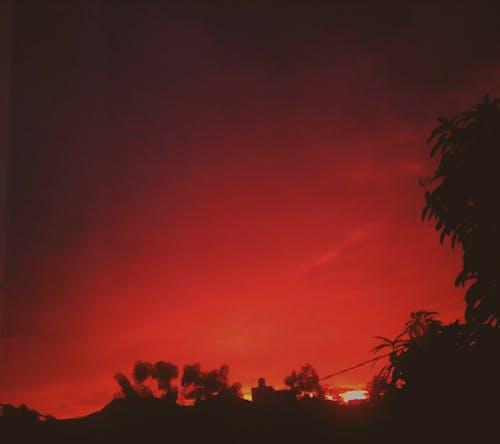 Foto d'estoc gratuïta de bellesa a la natura, capvespre, cel espectacular, fotògraf