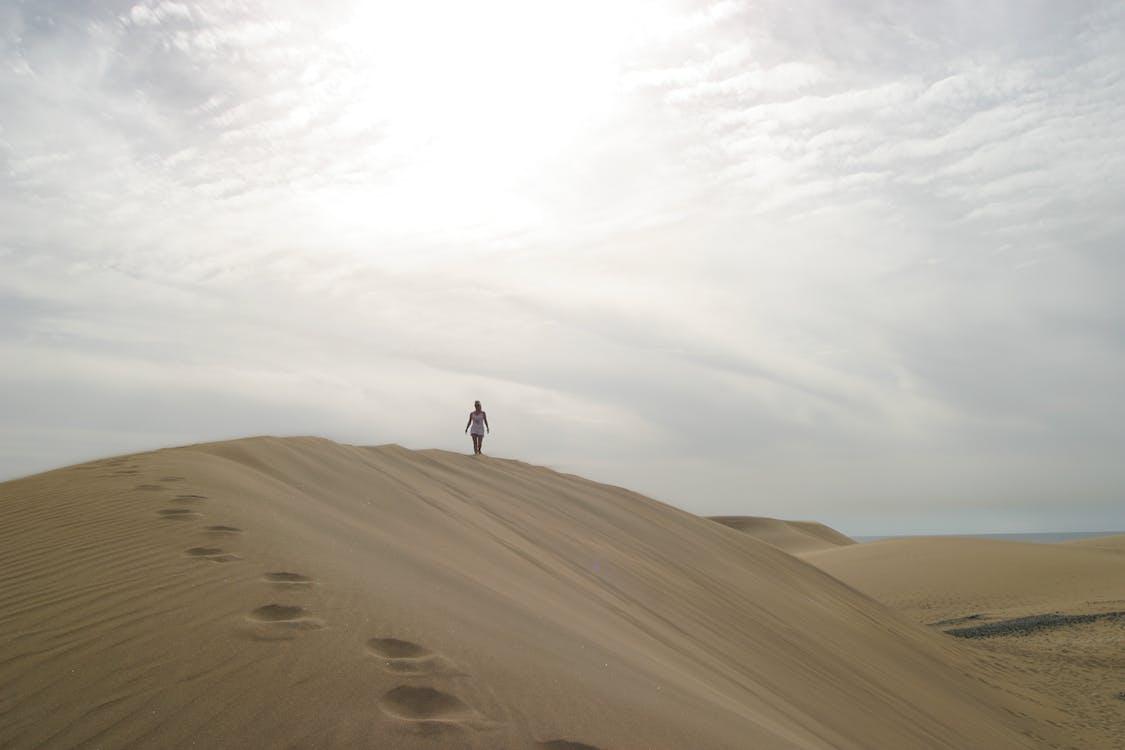 砂漠で話している人