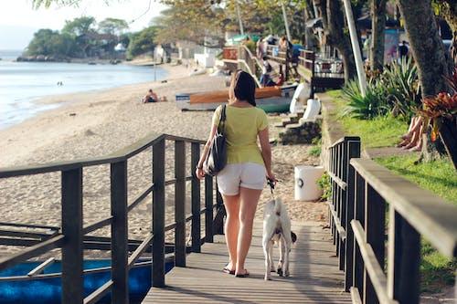 Fotobanka sbezplatnými fotkami na tému Brazília, breh, cestovať, chôdza