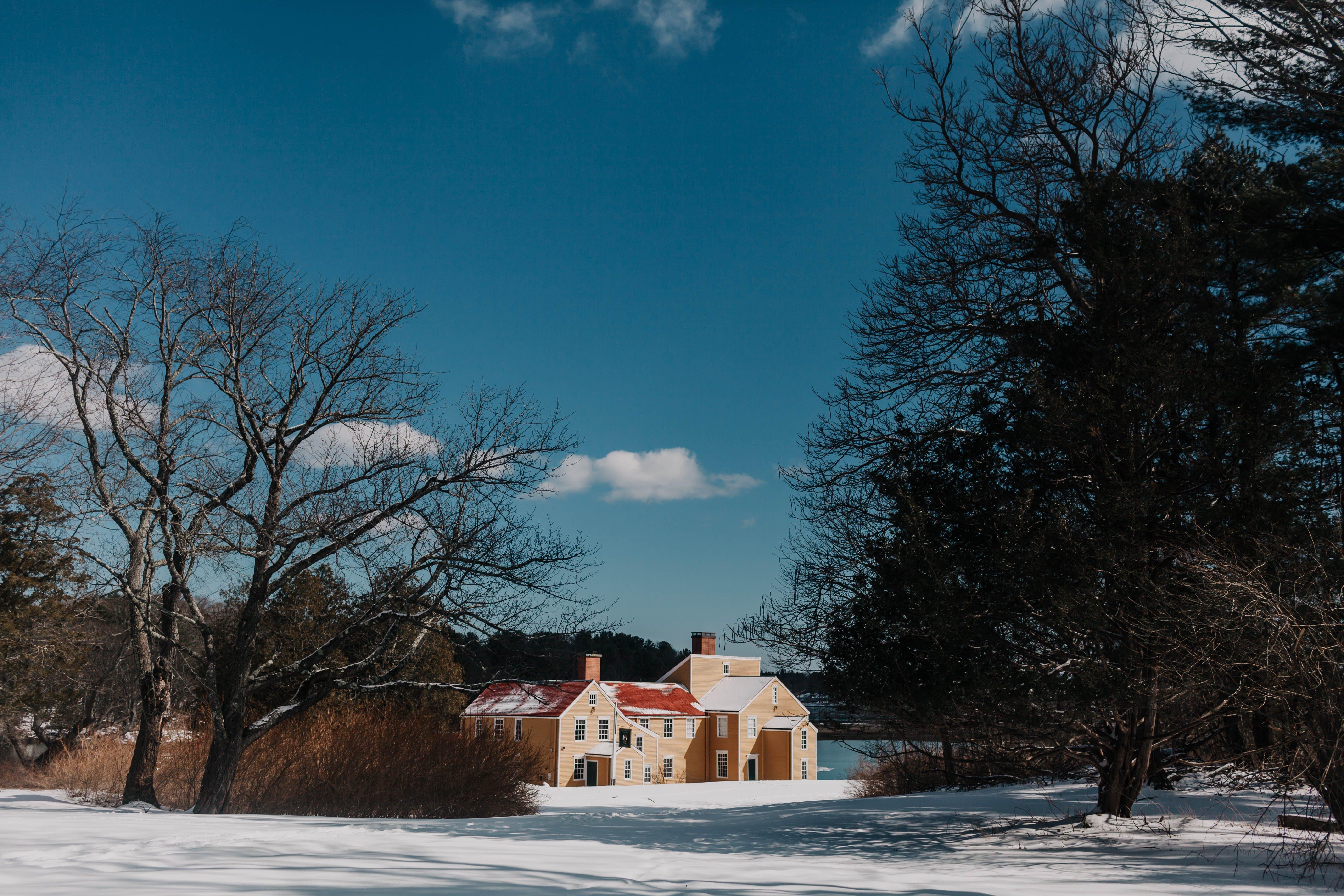 Безкоштовне стокове фото на тему «іній, голі дерева, дім, Денне світло»