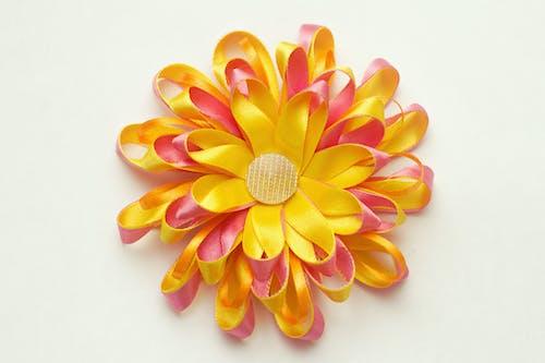 Gratis lagerfoto af baggrund, bånd, blomst, farve