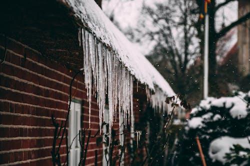 Kostenloses Stock Foto zu architektur, außen, eiszapfen, frost
