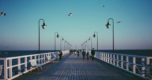 Ingyenes stockfotó dokk, emberek, fények, híd témában