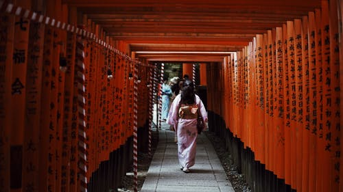 Woman Walking in Torii Gates