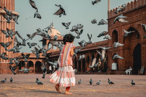 Girl Standing in Front of Flying Pigeons