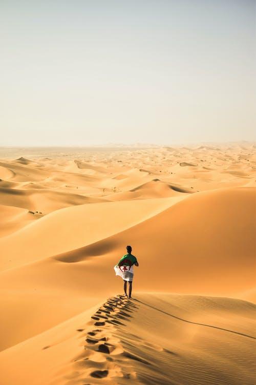Ingyenes stockfotó algéria, csípős, dűne, egyedül témában